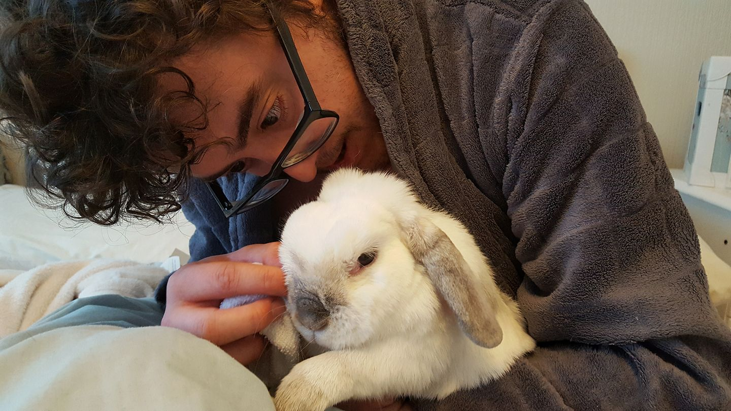 Barbara the sick rabbit having her eyes cleaned