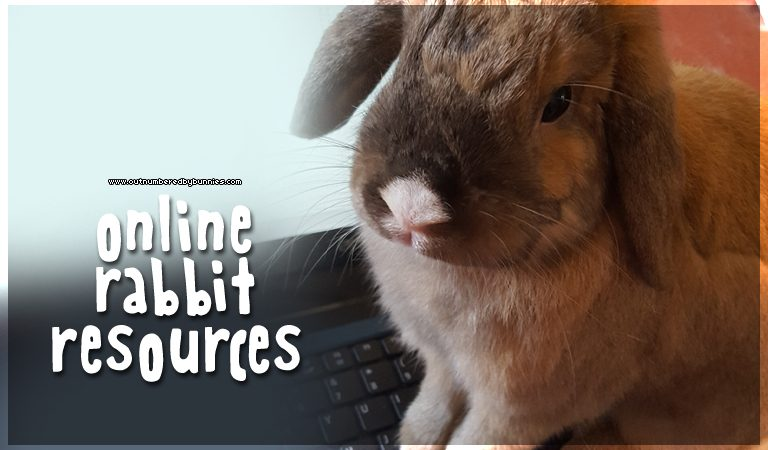 online rabbit resources