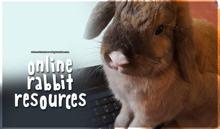 online rabbit resources