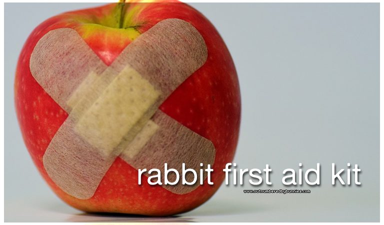 rabbit first aid kit